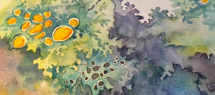 Flechten abstrakt in Aquarell - abstract Lichen in watercolor