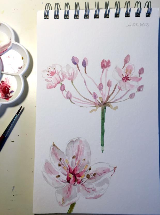 Schwanenblume Aquarell | Gesche Santen Blog