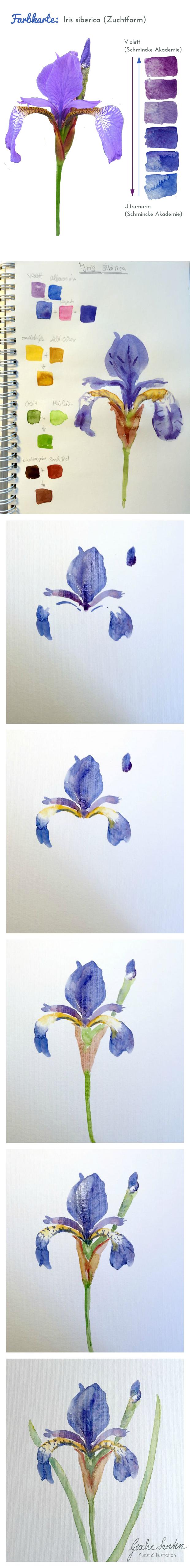 Mischen will gelernt sein farbkarten mit aquarell for Farbkarten kostenlos