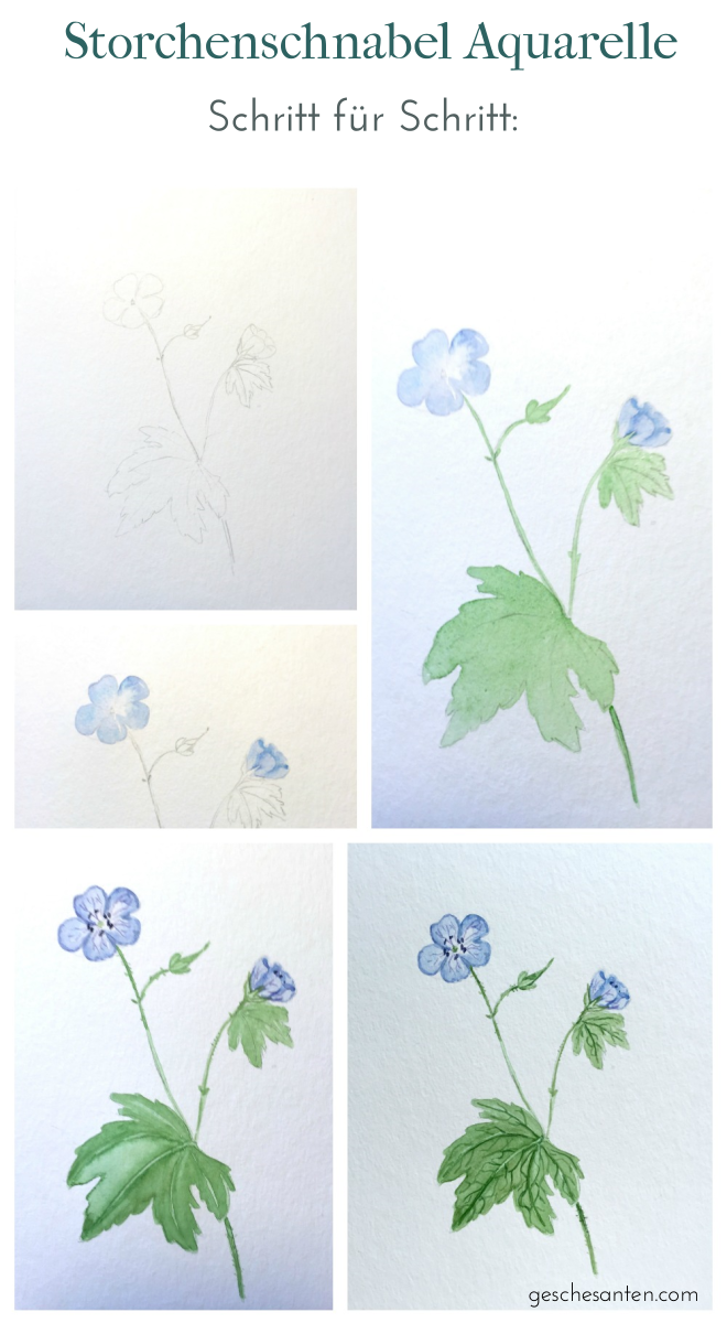 Botanik für Künstler – Wie floristisches Wissen Deinen Zeichnungen und Aquarellen helfen kann
