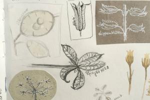 5 Ideen um Dich auch im Winter von der Natur inspirieren zu lassen - Skizzenbuch Ideen im Winter | Gesche Santen Blog