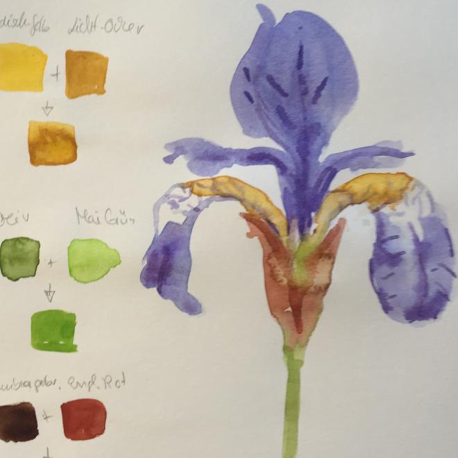 Mischen will gelernt sein – Farbkarten mit Aquarell erstellen