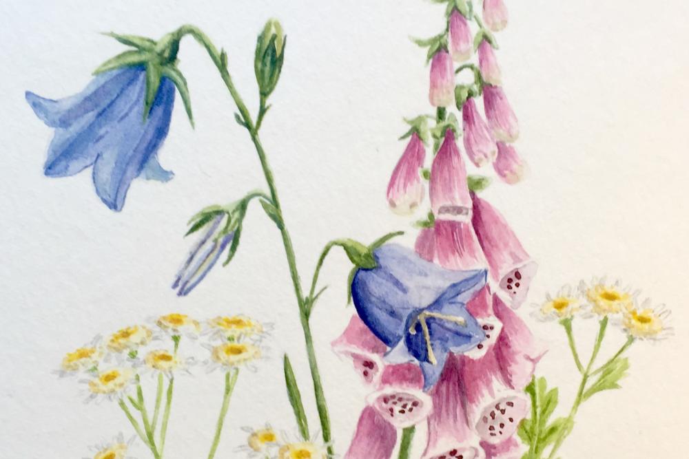 Im Garten meiner Oma – Ein Aquarell-Strauß aus Erinnerungen
