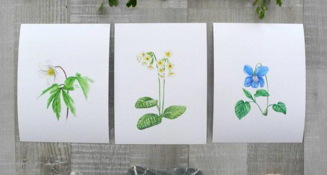 Botanische Aquarelle, Frühlingsblumen, Natur Dekoration
