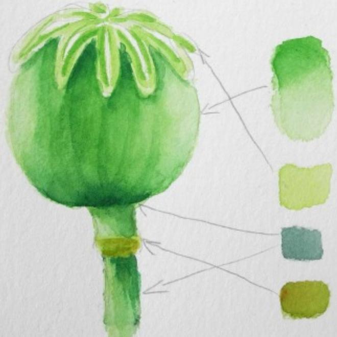 Der Grüne Faden – Mischen von Grüntönen in Aquarell