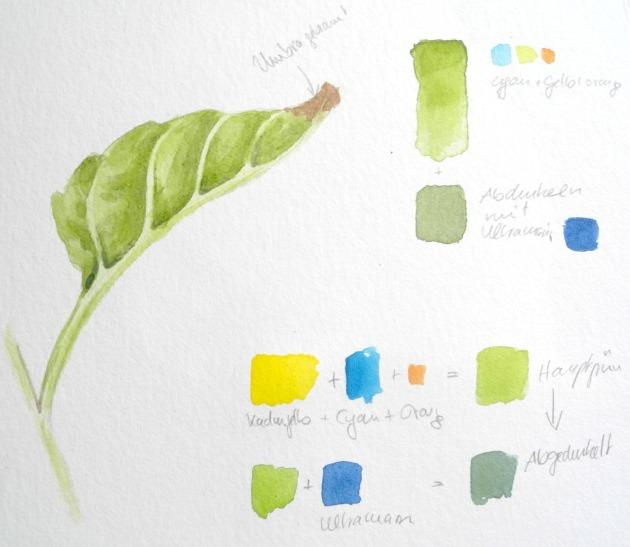 grün-mischen-8-660-B