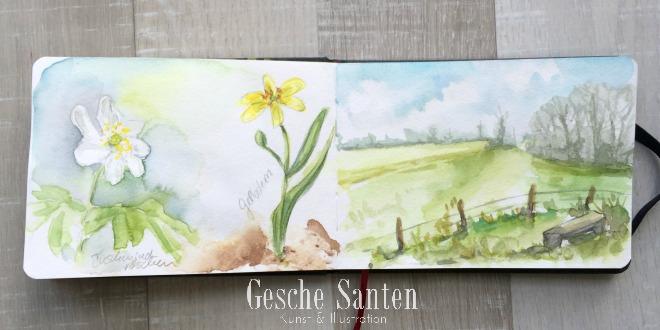 Naturskizzenbuch in Aquarell - Ein Spaziergang im Frühlingswald - Kleine botanische Entdeckungsreise und Skizzenbuch-Inspiration