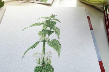 titel-grün-malen-Beitragsbild