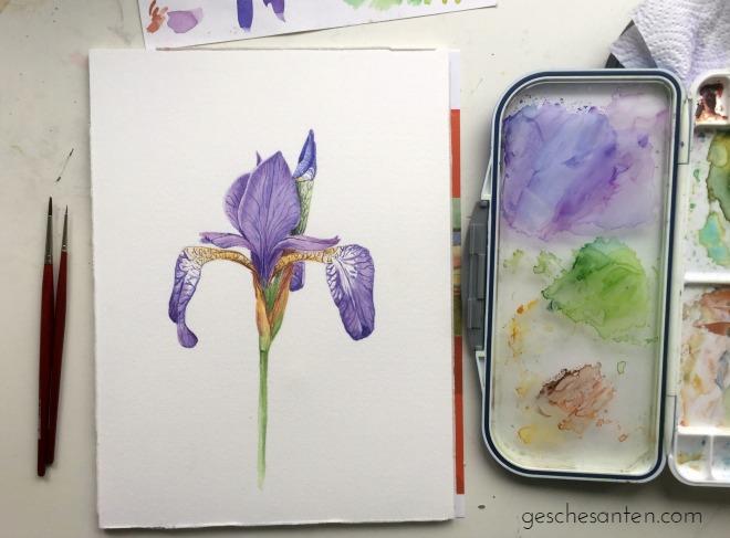 Wie meine botanischen Aquarelle entstehen – von der Inspiration bis zum letzten Pinselstrich Mein Prozess, wie ich Blumen in Aquarell male. Klicke hier und lese mehr oder pinne für später.