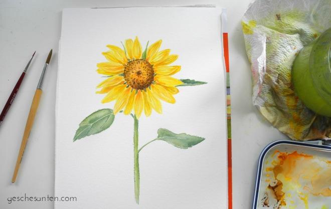 Sonnenblume Aquarell