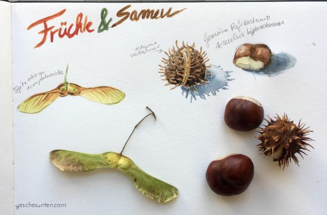 31 Ideen und Anstöße für Dein Skizzenbuch im Herbst. Wenn Du Ideen und Inspiration für Dein Skizzenbuch brauchst und Motive aus der Natur liebst, dann klicke hier für einen Einblick in mein herbstliches Skizzenbuch und ein PDF zu herunterladen