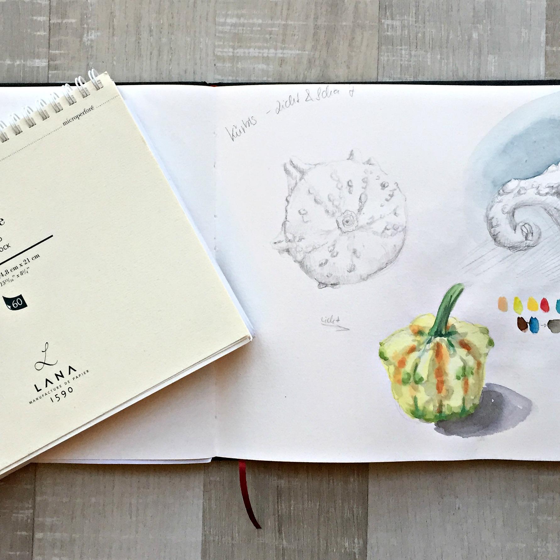 Skizzenbuchwahl - wie findest Du das richtige Skizzebuch für Dich? Alles hängt davon ab, was Du willst. Etwas handliches? Etwas für Aquarell?