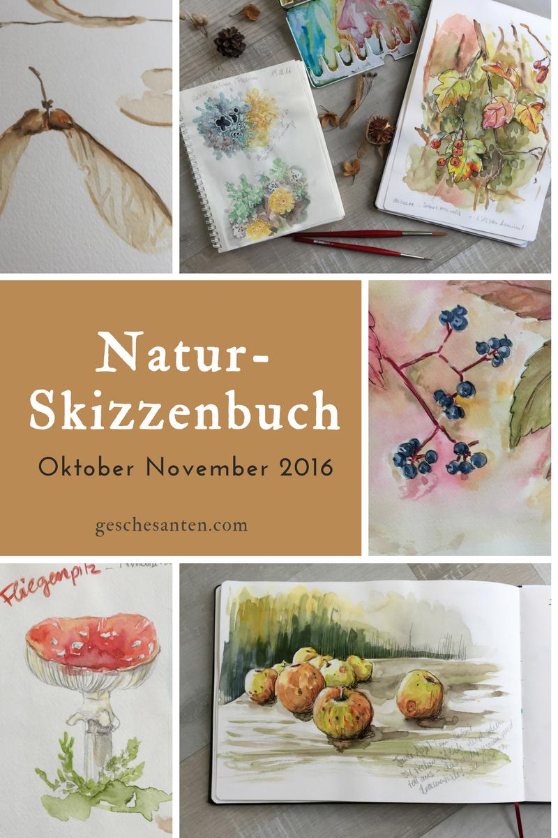 Einblick in mein Naturskizzenbuch Oktober-November 2016