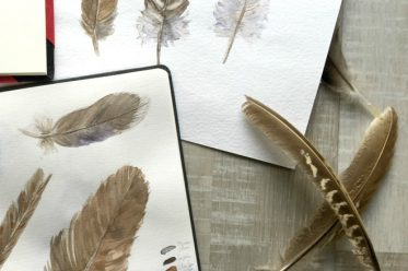 Natur entdecken mit dem Skizzenbuch - Wildkräuter zeichnen und Malen