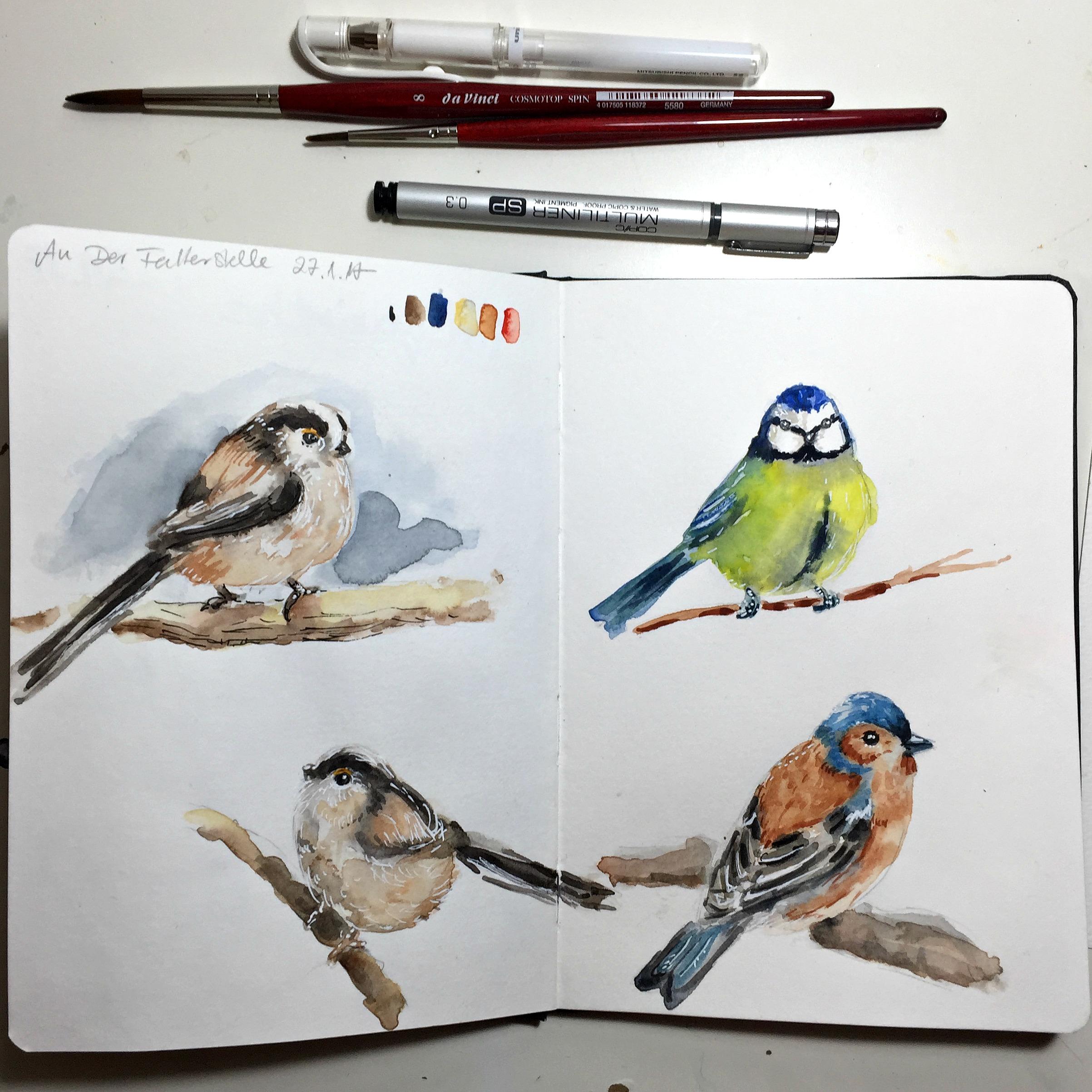 Wintervögel im Naturskizzenbuch {Video }