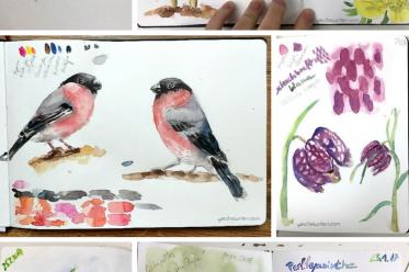 Naturskizzenbuch (nature journal) im Winter und Frühling