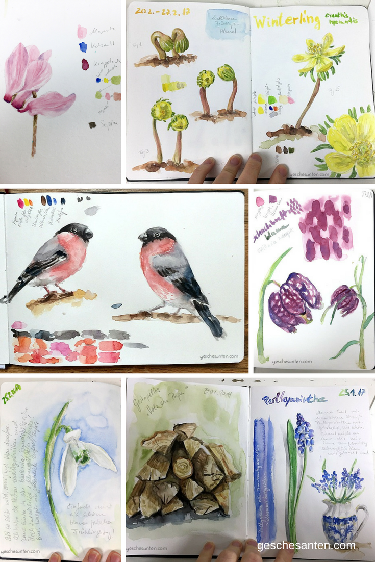 Kreativität im Vorfrühling – Mein Naturskizzenbuch und Projekte im Februar