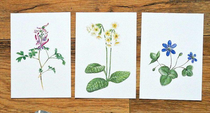 Postkarten Mix