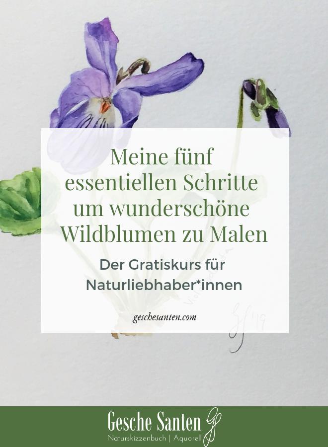 Veilchen in Aquarell - Viola in Watercolor. Schritt für Schritt botanische Aquarelle malen